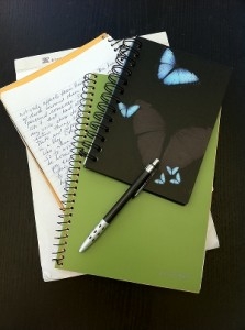 Lilly's Notebooks